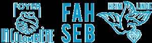 FAH-SEB : Fondation FAH-SEB établissements pour personnes en situation d'handicap
